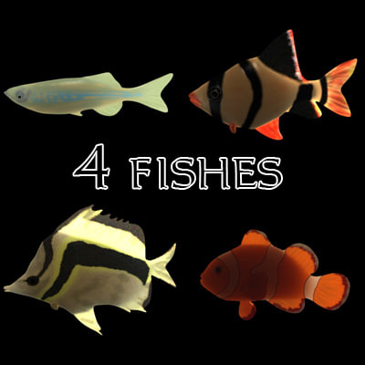 4fishes.jpg