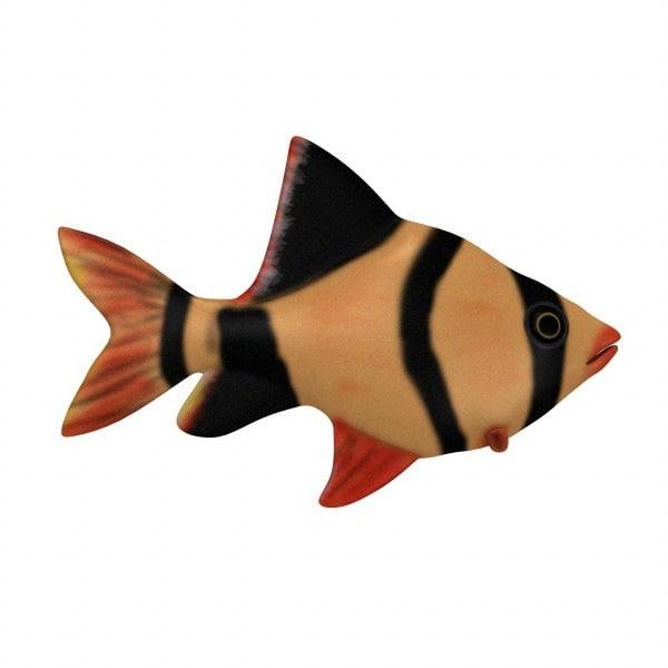 fish3_render.jpg