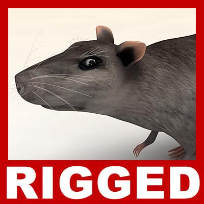 rat_th001.jpg