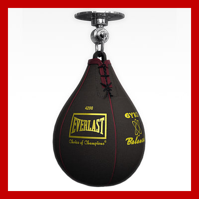 speedbag_th001.jpg