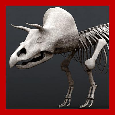 triceratops_th001.jpg