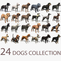 24 Dogs Collection