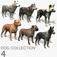Dog Collection (4)