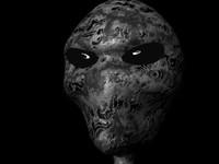 grey alien ma