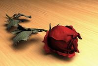 3d red rose model