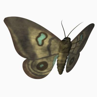 moth4.png