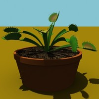 venus fly trap 3d model
