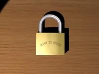 lock 3d max