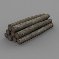 3dsmax trunks