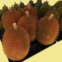durian boxes durianas 3d model