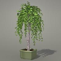 Plant 3ds.zip
