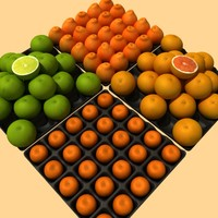 Grapefruits, orange, mandarine collection