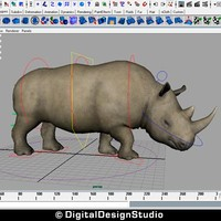 Rhinoceros Rigged
