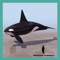male orca whale orcinus 3d max