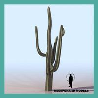 saguaro desert cactus 3d max