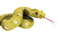 snake viper 3d model