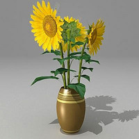 Bouquet Sunflower fbx.zip