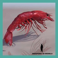 3d large red prawn