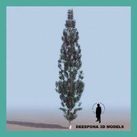 populus tree 3d model