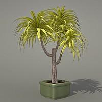 max plant
