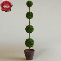 3d interior tree pyramid model