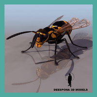 3d max wasp aculeate vespidae insect