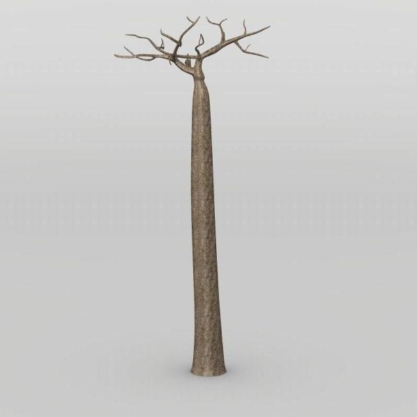 baobab_render.jpg