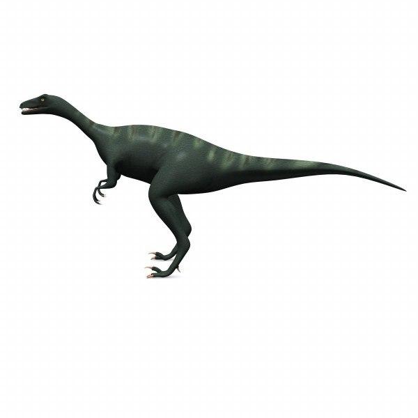 eoraptor_render.jpg