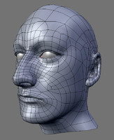3ds max head human male