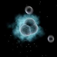 3d atom electrons model