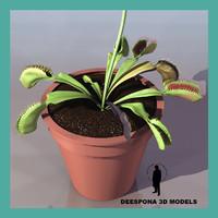 3d model venus flytrap dionaea muscipula