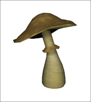 Fancy Mushroom (low poly)