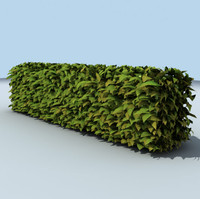 hedge architectural leafs 3d model