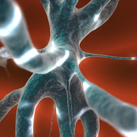 ready neuron electricity activity 3d model