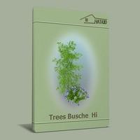 trees busche max