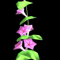 morning glory pink 3d model