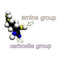 free atom chemical 3d model