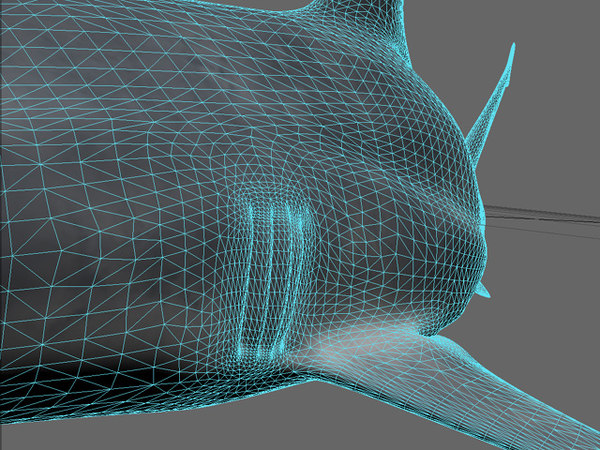 3d model reef shark - ReefShark... by MakerOfStuff