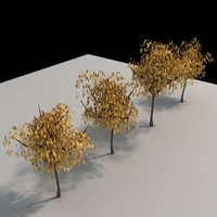 3d model tree architectural