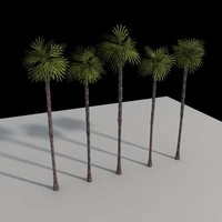 palm trees 3d 3ds