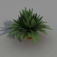 fern plant 3d max