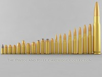 The Pistol and Rifle Cartridge Collection