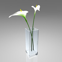 Decorative vase with two Callas flowers