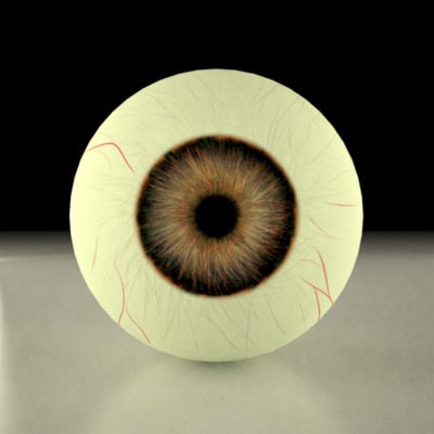 3d brown eye model - brown eye... by 3DMB