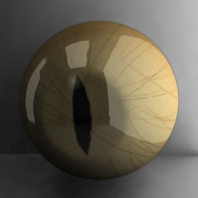 cat eye 3d max - cat eye... by 3DMB