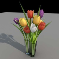maya aalto tulip flowers