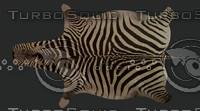 zebra rug 3d max