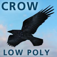 3d raven crow