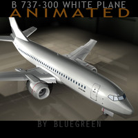 Boeing 737-300 Plane (A)