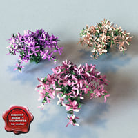 3d model bush flowers v2